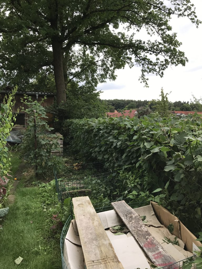 Kompostplatz entlang der Haselnußhecke