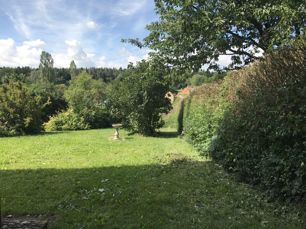 Vorgarten mit Ligusterhecke und Vogeltränke