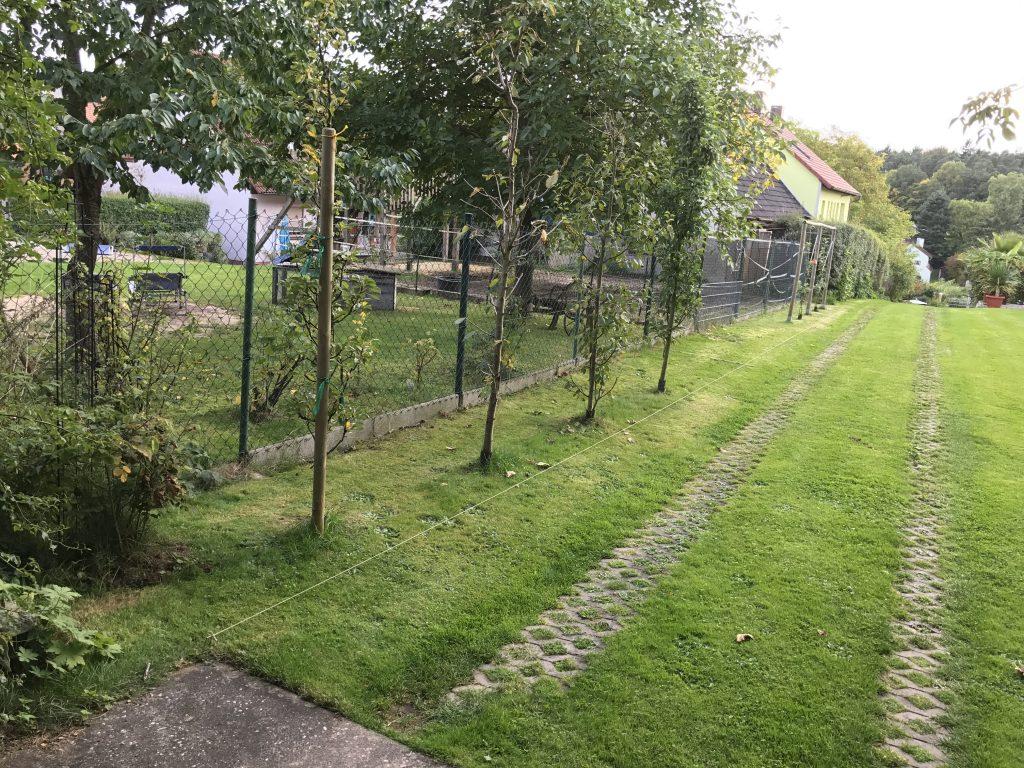 Obstgarten an der Grundstücksgrenze