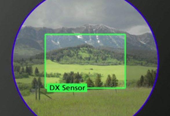 DX-sensor