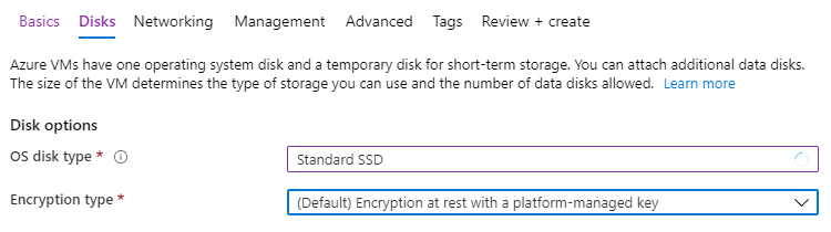Disk options in Azure portal are set to Standard SSD and Default Encryption Type.