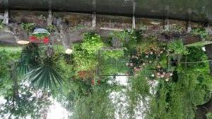 Les hortillonnages
