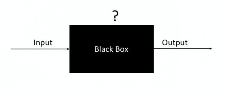 The black box and econometrics.