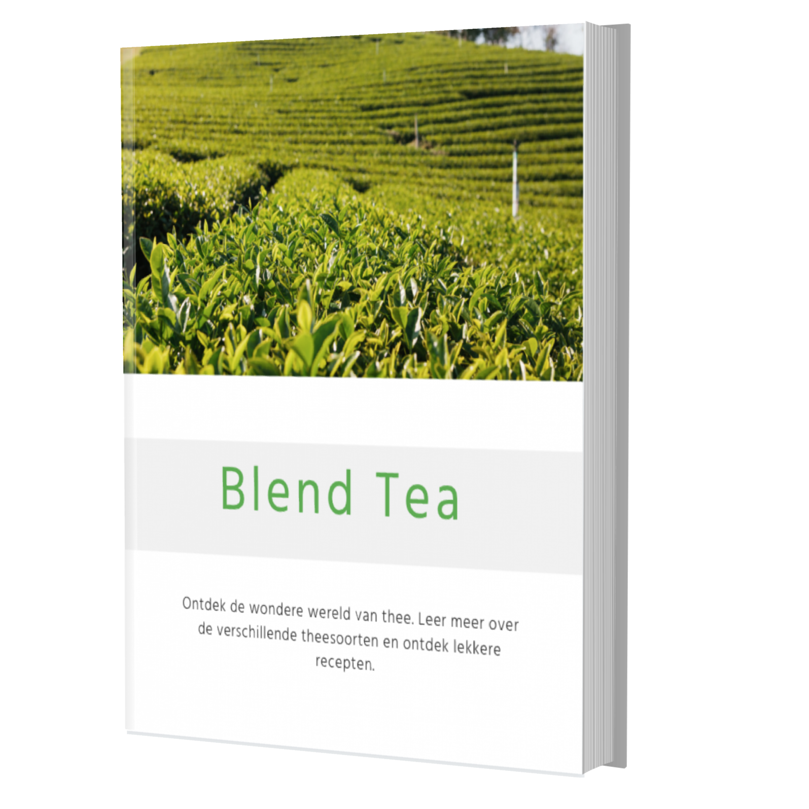 Blend Tea e-book: thee recepten, inspiratie, productieproces