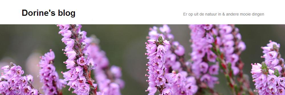 Dorine's blog