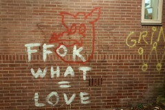 fok-what-is-love