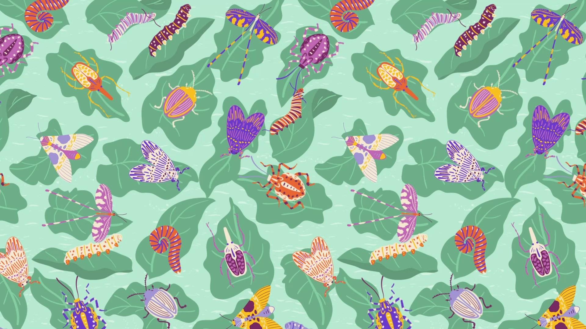 Bugs Surface Pattern 16x9 JPEG