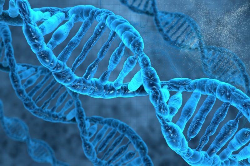 Epigenetisk Screening