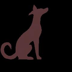 Surrey Canine Corner | BLOG