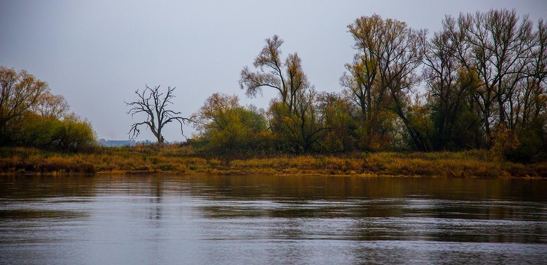 Unterwegs in der Mittleren Elbe