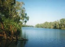 Grüne Oase im Outback, Australien