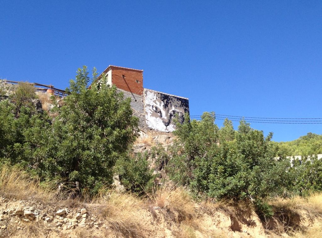 Katze in Fanzara