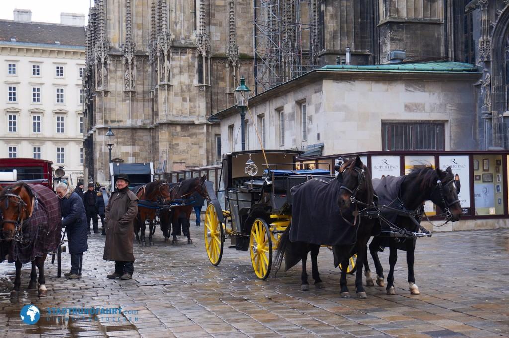 Kutsche am Stephansdom in Wien