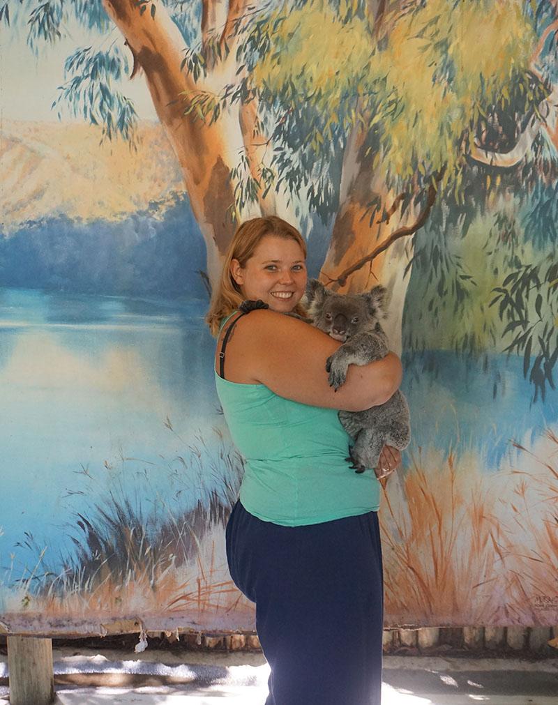 Koala knuddeln in Australien