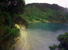 Traumhafte Bucht im Northland in Neuseeland