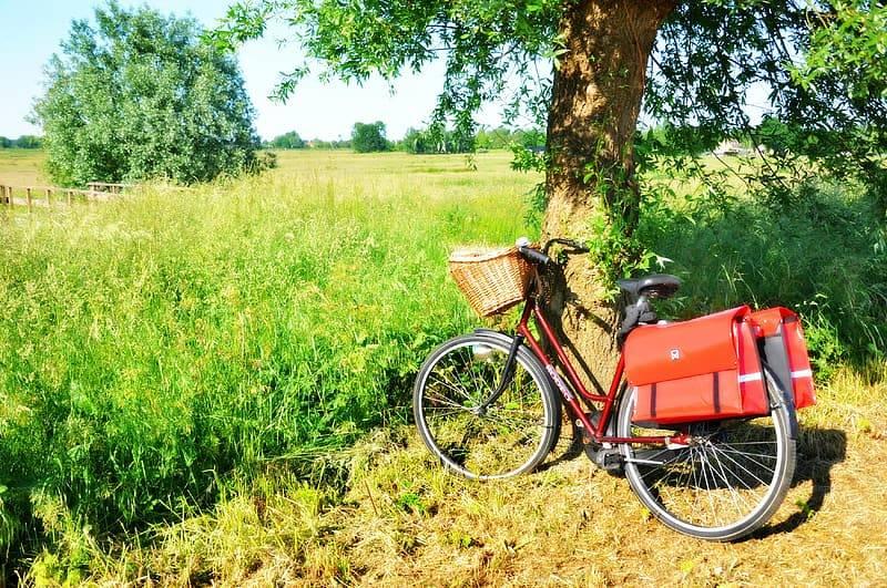 Röd cykel med träkorg vid styret och röda väskor hängandes över pakethållaren står intill ett träd i naturen framför en äng med gräs och blommor. Rekommendationer för fysisk aktivitet kan uppnås genom aktiva transporter med tex cykling till jobbet