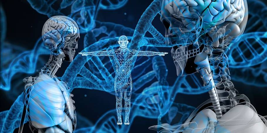 Proteinbrist vid detox, Karolines way of life hälsoblogg