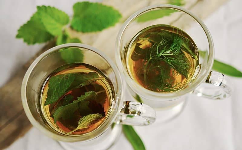 Tekoppar med pepparmynta och dill, Karolines way of life hälsoblogg