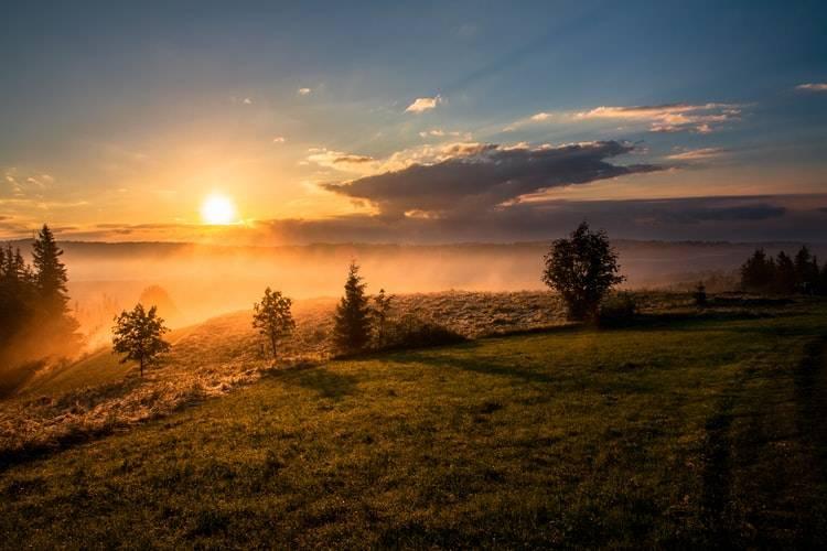 Soluppgång i naturen där solen kommer upp från molnen vid skogsbryn, morgonmänniska