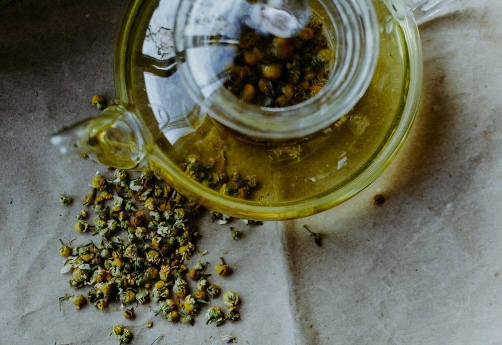 Tekanna i glas med kamomillte på bord med beich färg. På bordet ligger torkade blommor av kamomill. Kamomill lugnar och kan förbättra sömn