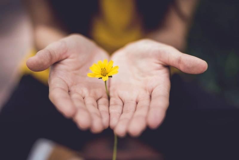 Kvinna håller fram sina händer med handflatorna uppåt och mellan dem sitter en gul blomma med grön stjälk fast. Bilden är i fokus på kvinnans händer och suddig resten. Man ser enbart kvinnans händer och en del av hennes kropp, inte ansikte. Hon har på sig en gul topp och svarta byxor. Högkänslig och dess fördelar