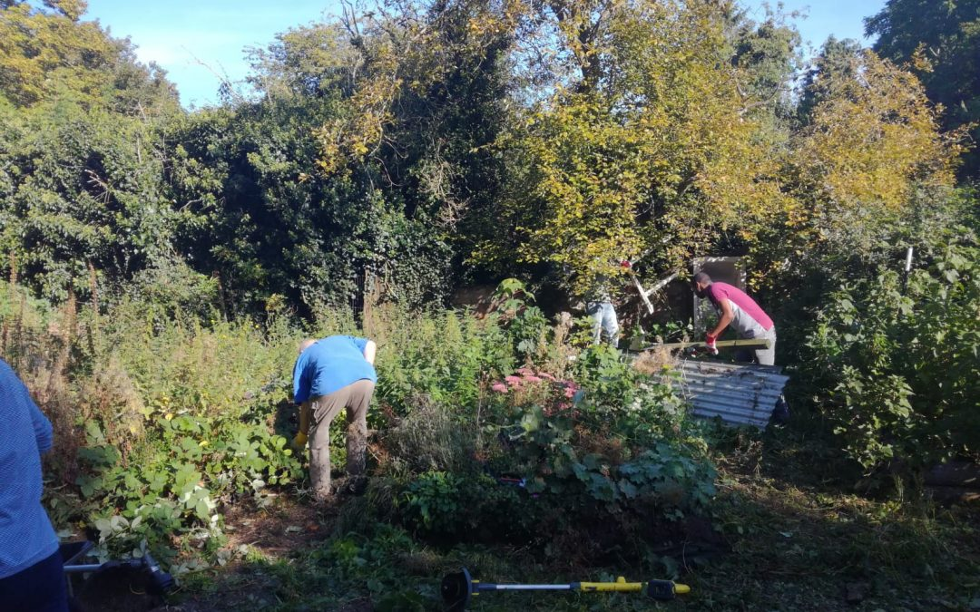 Don't Lose Hope given lease to use Wellhead Community Garden in Bourne