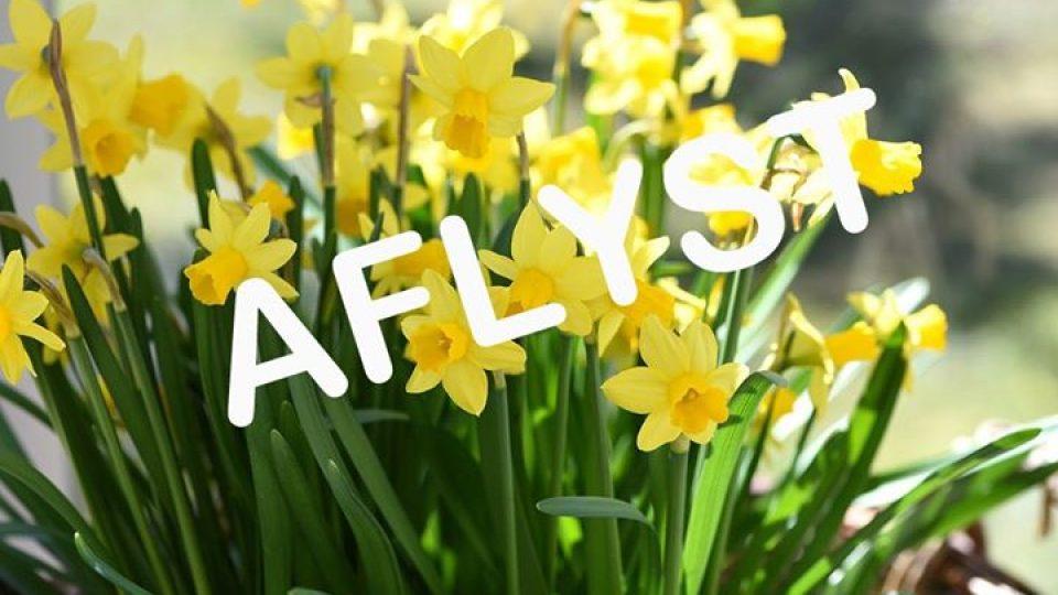 Forårsfest – Pensionistforening