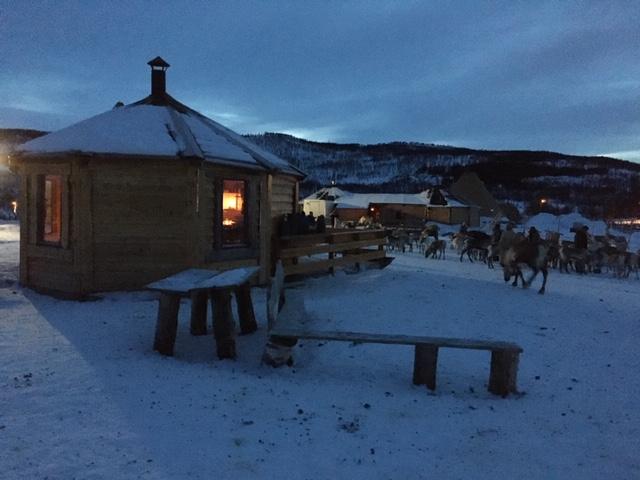 saami-camp