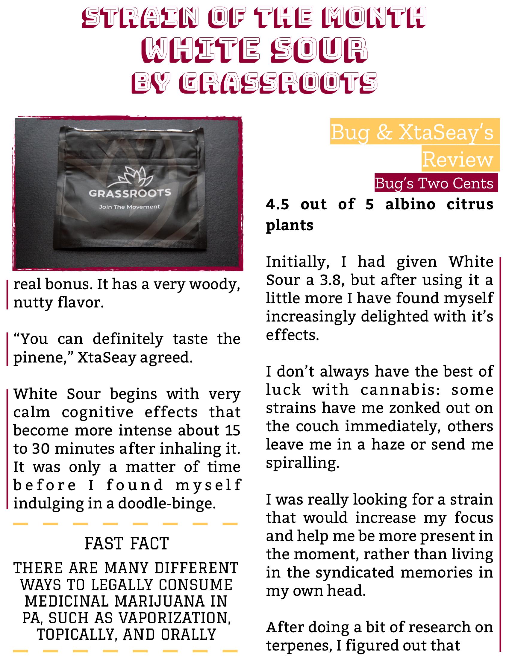 The Burgundy Zine #5: Culture Pg. 138