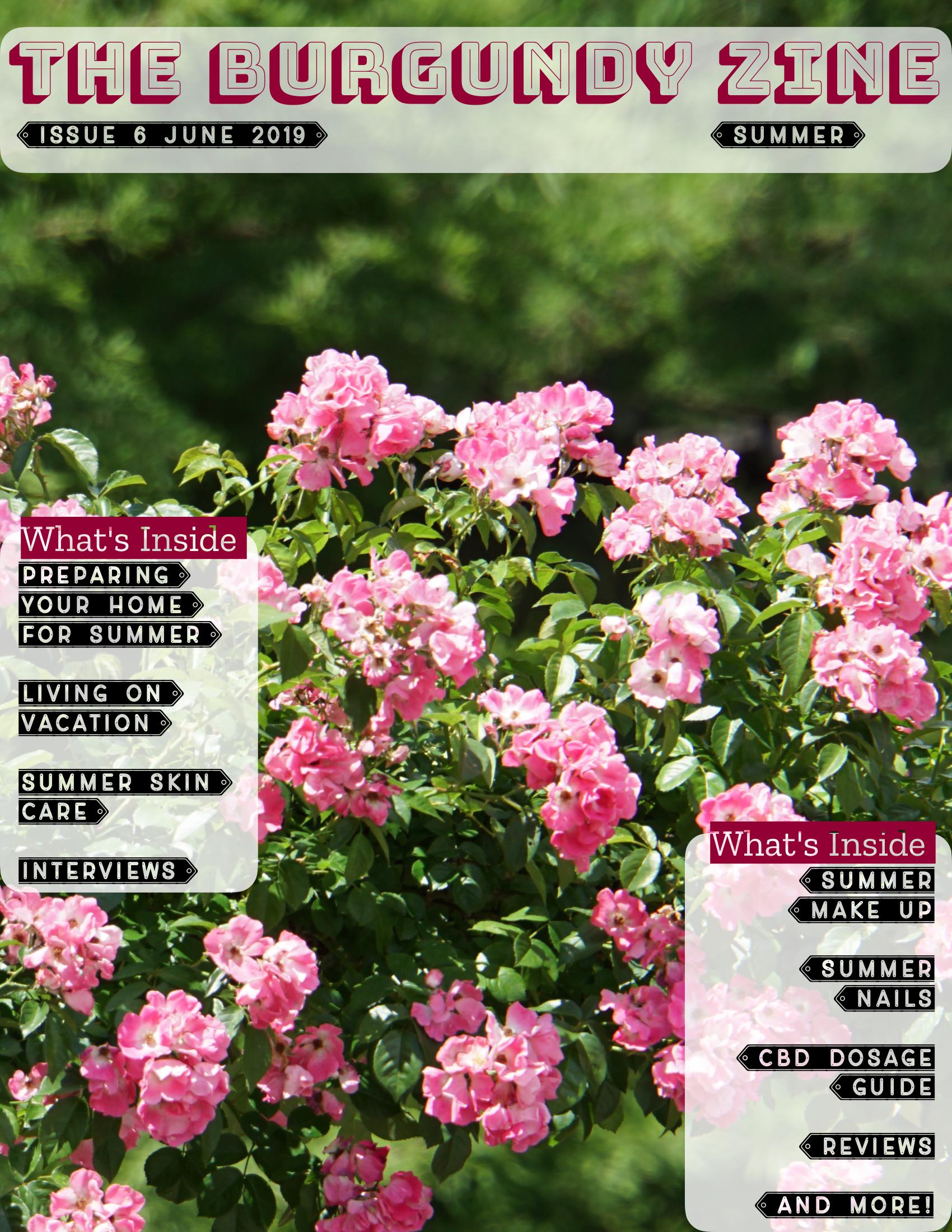 The Burgundy Zine #6: Summer Pg. 01