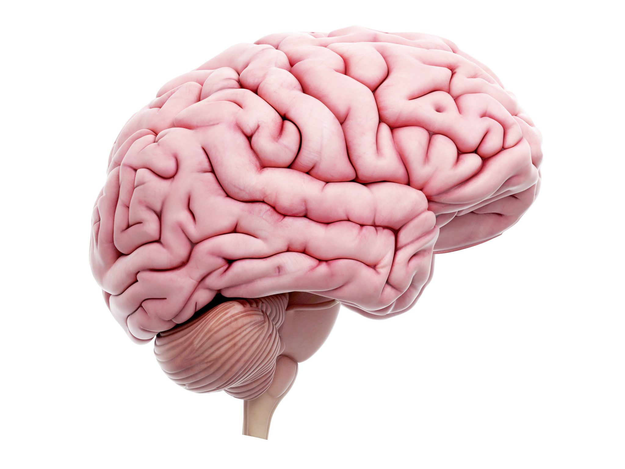 NeuroCOVID: NIH Launches Database to Track Neurological Symptoms of COVID-19