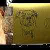 Hund, oxiderad mässing