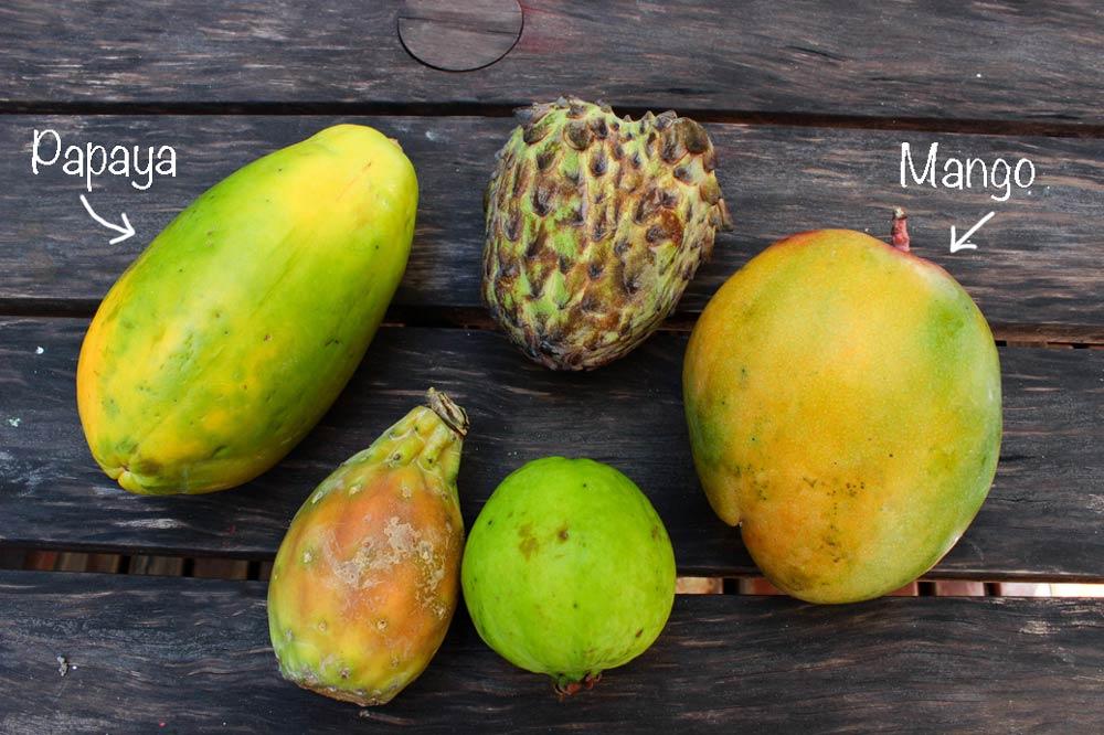 Exotic fruit – part 1.