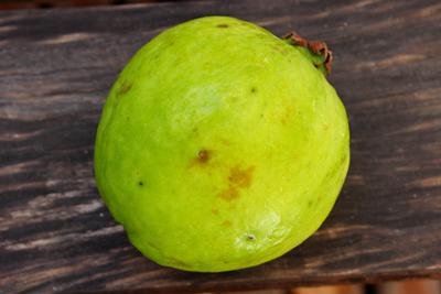 Guáva ovocie