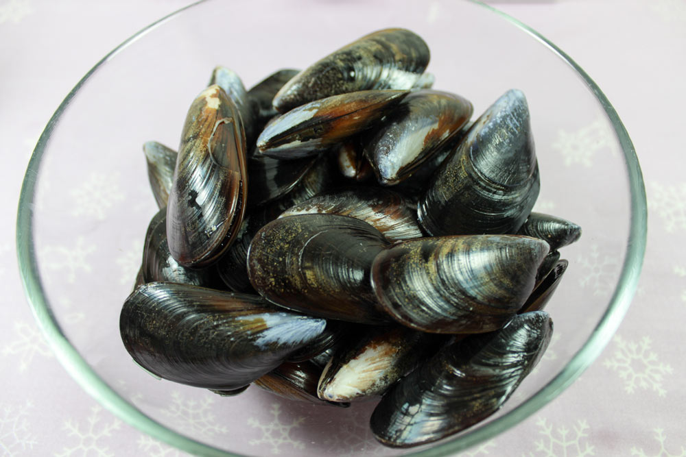 Blue mussels before cooking