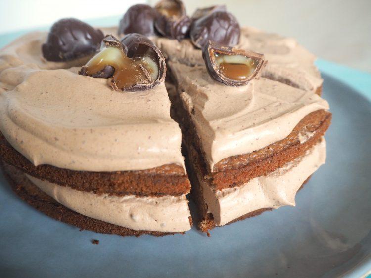 Chokoladekage med skildpaddemousse