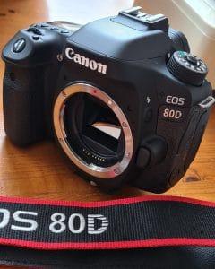 Canon eos 80d + Canon 50mm f/1.8 stm