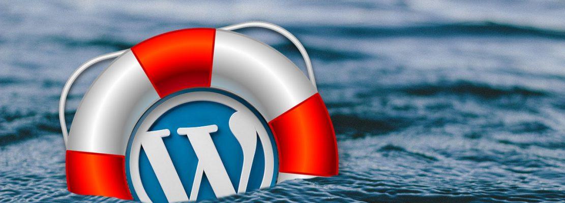 Opciones de Pantalla y Ayuda de WordPress