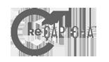 recaptcha_logo_large_large