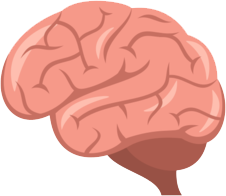 Hjerne-til-anmeldelser-fyldt