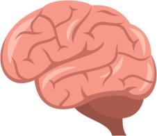 Hjerne til anmeldelser – ikke-fyldt