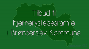 Broenderslev-Kommune-1
