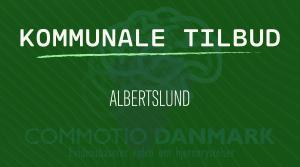 Tilbud til hjernerystelsesramte i Albertslund Kommune