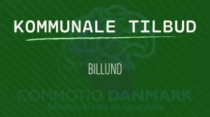 Tilbud til hjernerystelsesramte i Billund Kommune