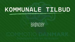 tilbud til hjernerystelsesramte i Brøndby Kommune