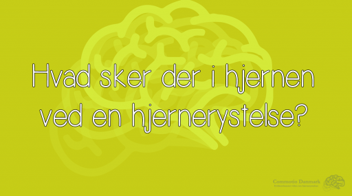 Hvad sker der i hjernen ved en hjernerystelse?