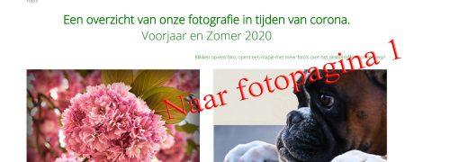 fotopagina1b