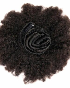 4C Natural Kinky Clip-In Hair Extensions