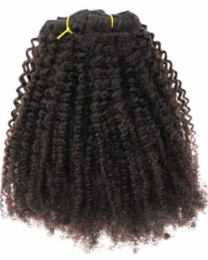 Afro Kinky Natural Coily Clip-in extensions