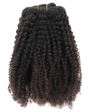 Afro-Kinky-Curly-Natural-Clip-In-Extensions